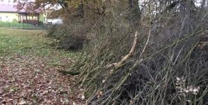 Proti plošnému kácení keřů v údolích Křeslic