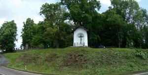 Petice proti vykácení stromů na hřbitově v Mladých Bukách