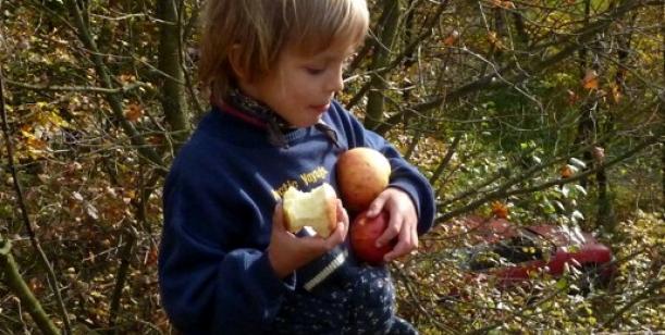 Chceme zachránit pestrost předškolní péče