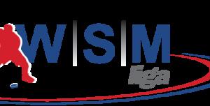 Petice za zavedení videa do WSM ligy