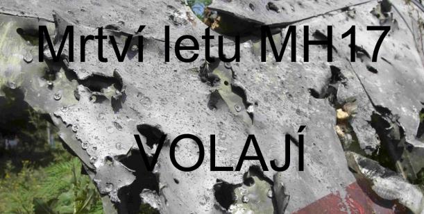 Prezidenti, mrtví letu MH17 volají