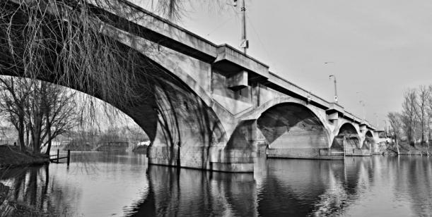 Petice za odvolání náměstka Petra Dolínka Zastupitelstvem hlavního města Prahy