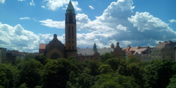 NE KÁCENÍ! 93 ze 136 stromů na Jiráskově náměstí v Plzni!