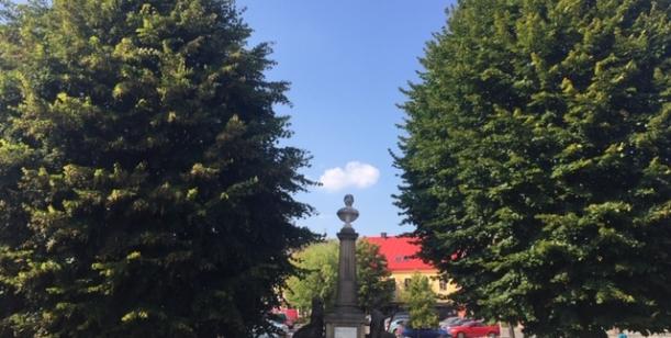 Petice proti kácení stromů na Husově náměstí v České Skalici