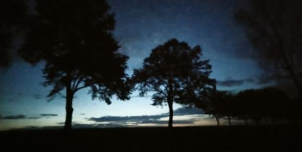 Petice za zachování noční oblohy nad hřištěm