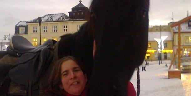 Zrušení překážek na koňských dostizích
